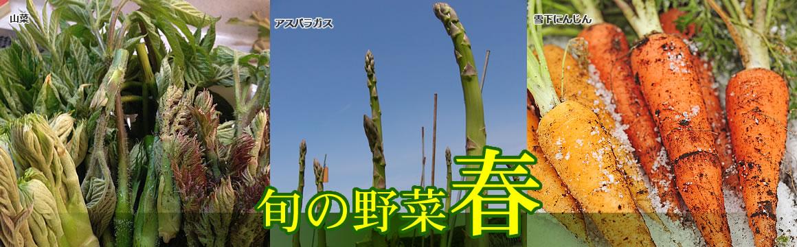 メイン画像・春野菜
