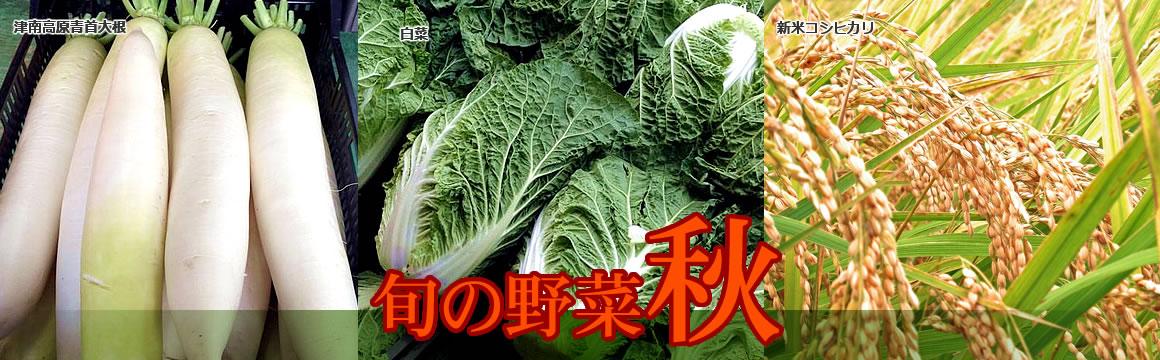 メイン画像・秋野菜